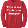 My Christmas Jumper - Red
